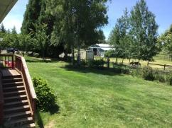 Mini Love Farm